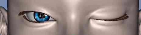 【ZBrush】目を閉じるモーフを作る。2【Daz】7